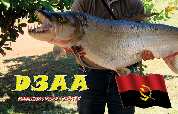 QSL image for D3AA