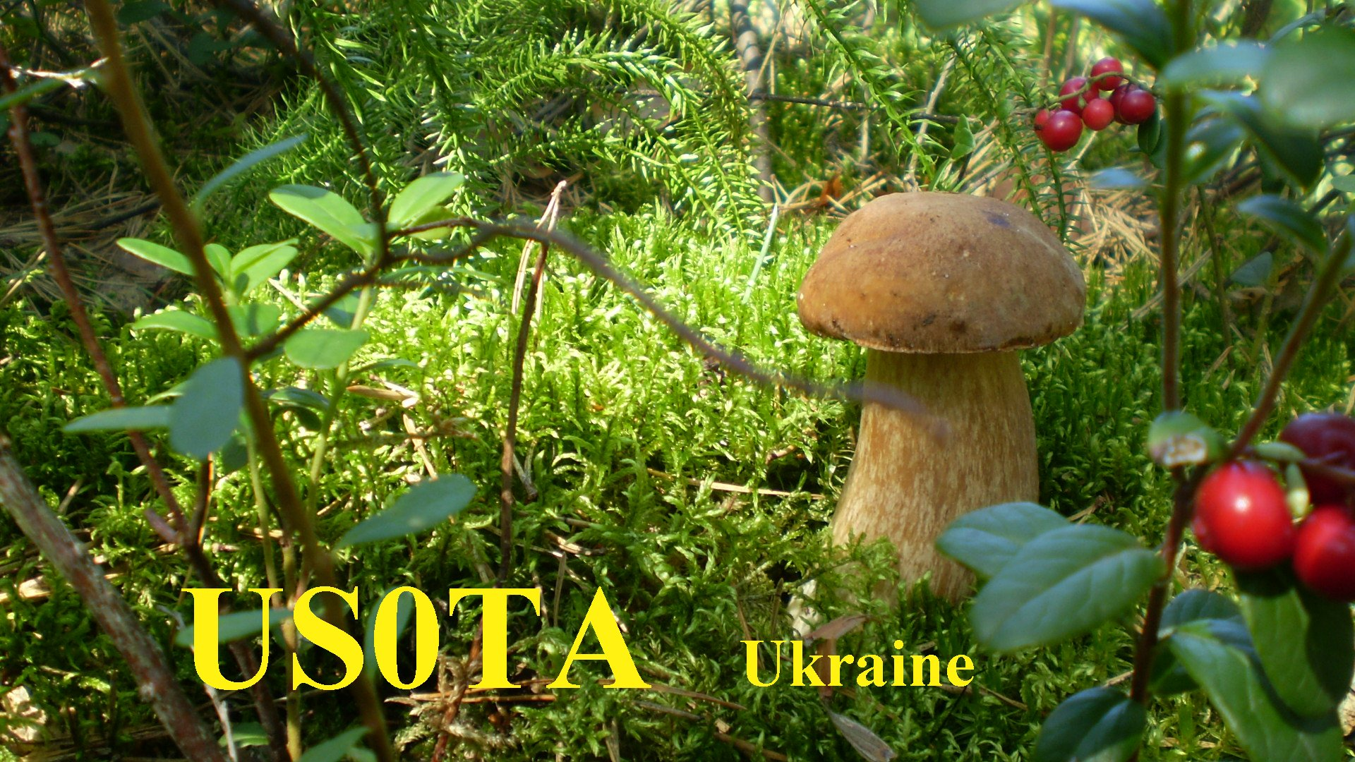 QSL image for US0TA