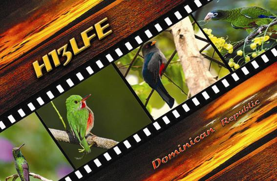 QSL image for HI3LFE