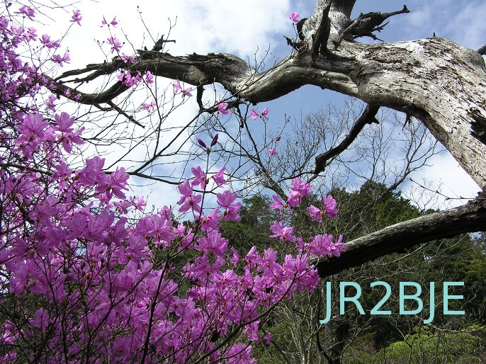 QSL image for JR2BJE