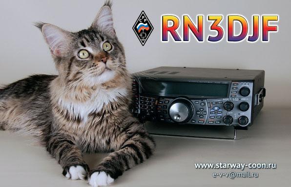 QSL image for RN3DJF