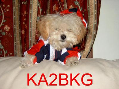QSL image for KA2BKG