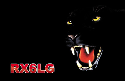 QSL image for RX6LG