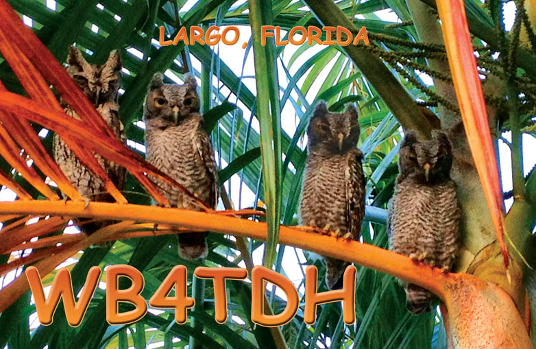 QSL image for WB4TDH
