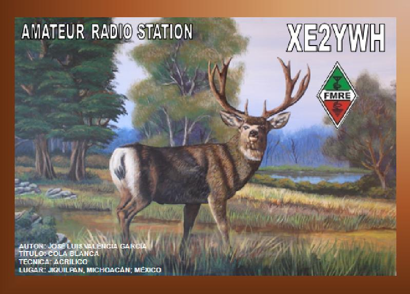 QSL image for XE2YWH