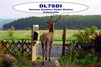 Our friend shown on my QSL-card. It's not a fake - that' life