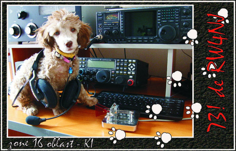 QSL image for RW4NJ