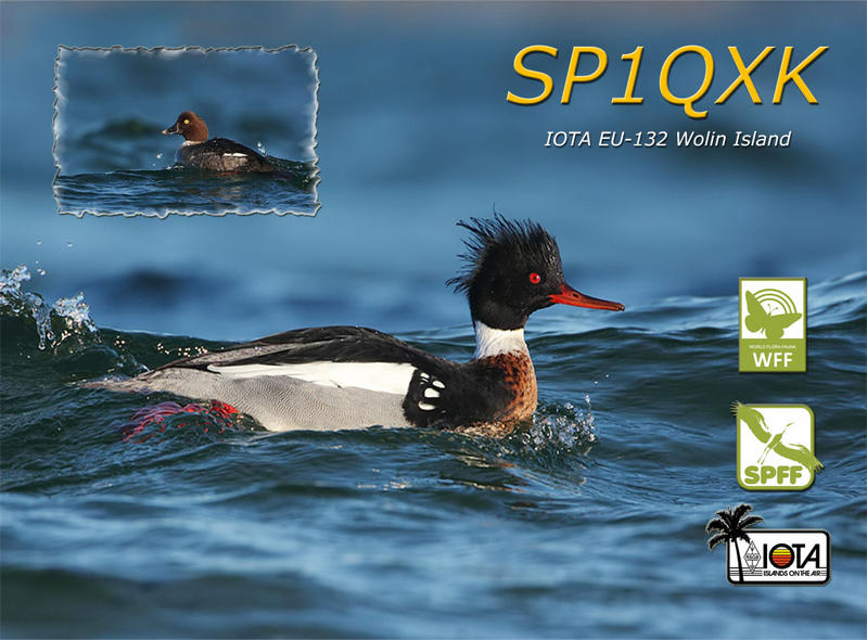 QSL image for SP1QXK