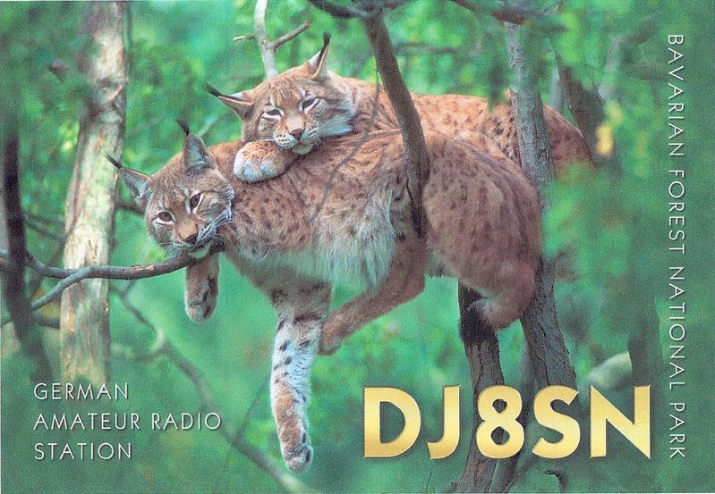 QSL image for DJ8SN
