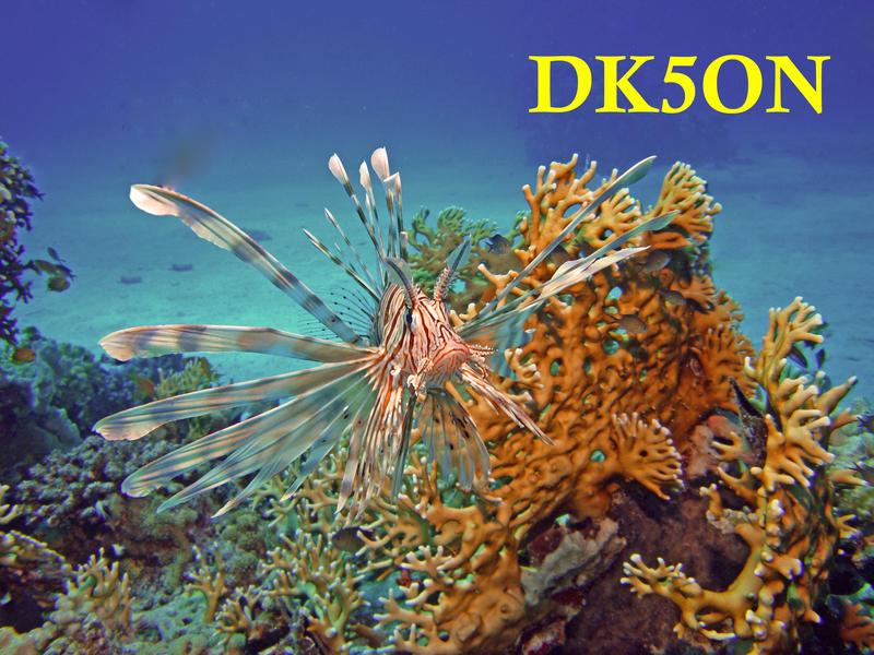 http://files.qrz.com/n/dk5on/QSL_Karte_DK5ON_mit_Call.jpg