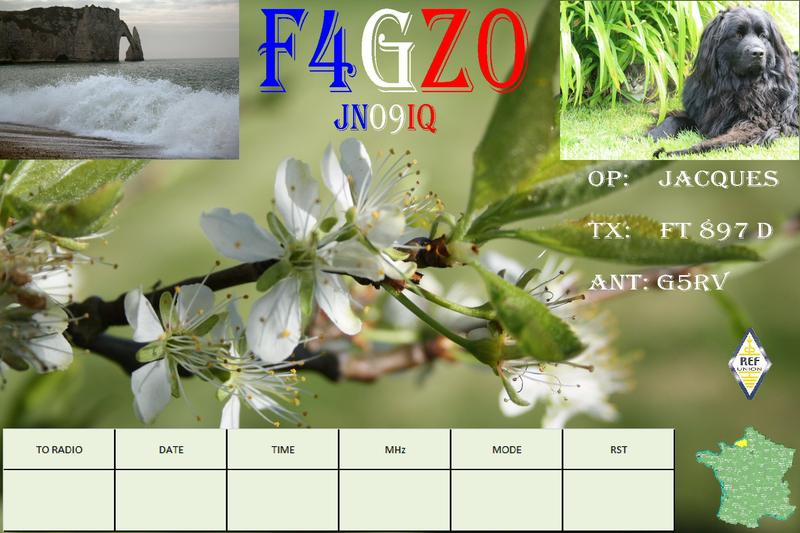 QSL image for F4GZO
