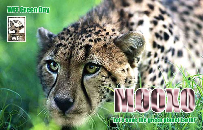 QSL image for M0OXO