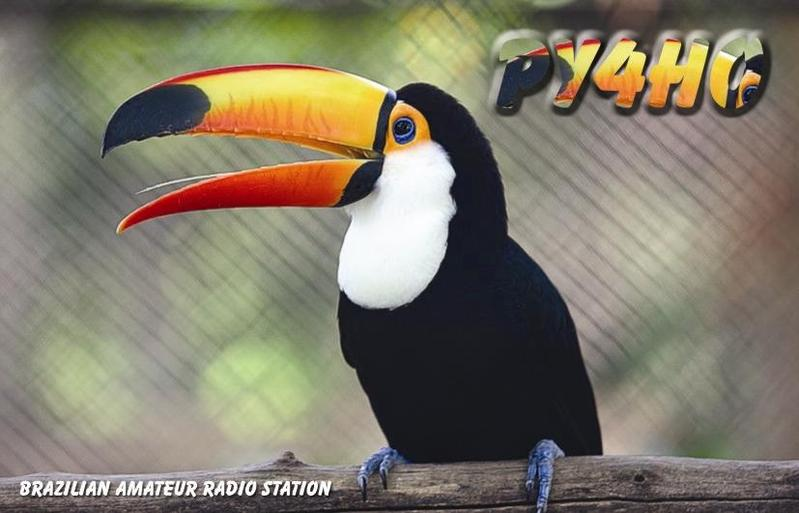 QSL image for PY4HO