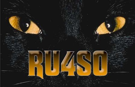 QSL image for RU4SO