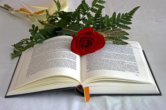 Sant Jordi, un llibre i una rosa