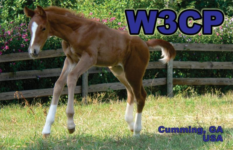 QSL image for W3CP