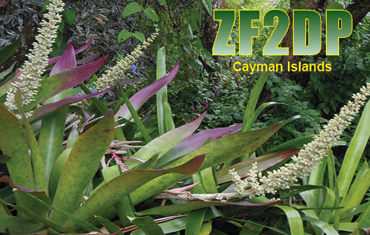 QSL image for ZF2DP