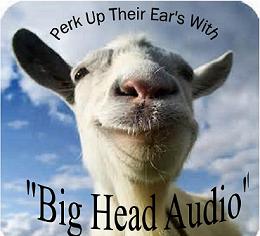 N8SDR Big Head Audio