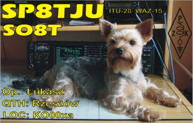 QSL image for SP8TJU