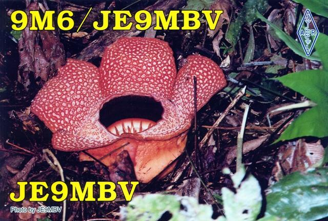 QSL image for JE9MBV