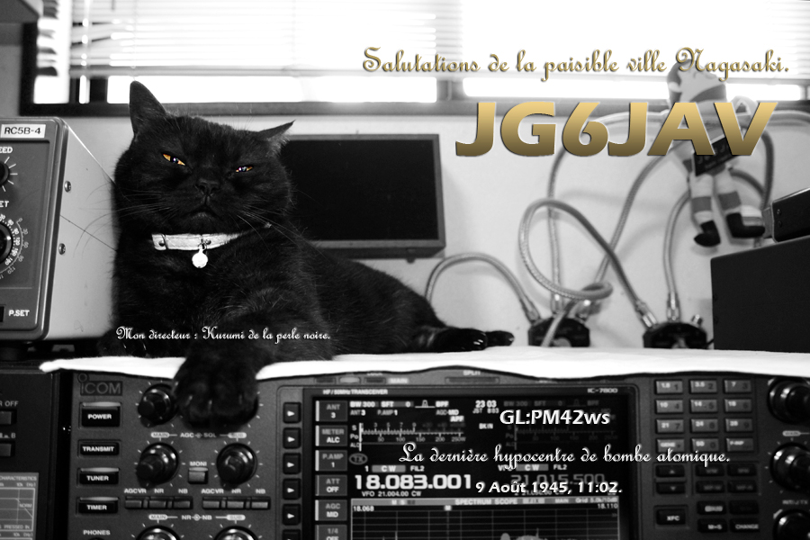 QSL image for JG6JAV