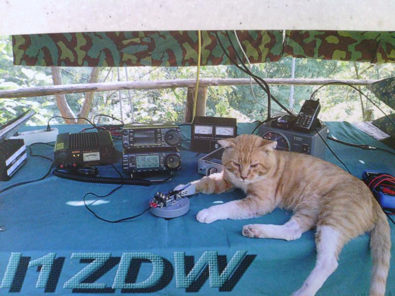 QSL image for I1ZDW