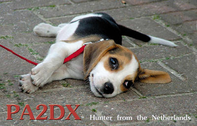 QSL image for PA2DX