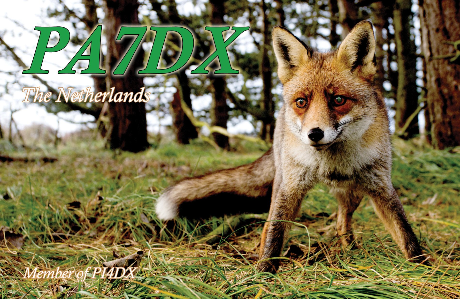 QSL image for PA7DX