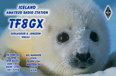 QSL image for TF8GX